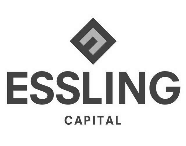 Logo Essling